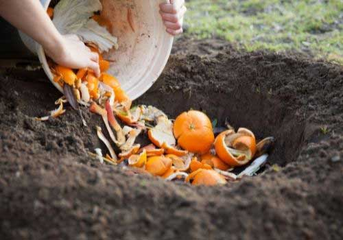 Compostable-land-fill